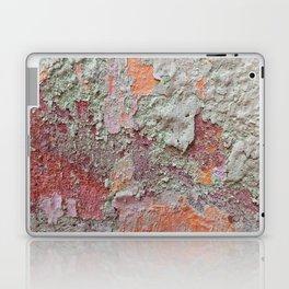 017 Laptop & iPad Skin