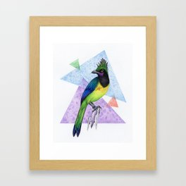 Alternative Jay Framed Art Print