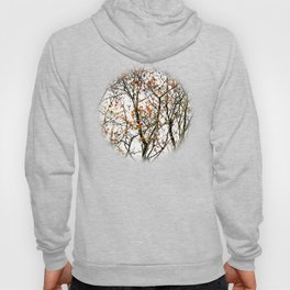 Red rowan fruits or ash berries Hoody