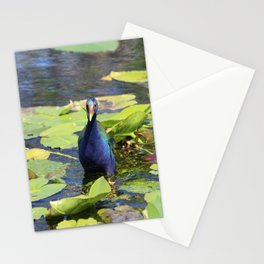 Purple Gallinute Stationery Cards