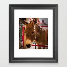 Donkey III Framed Art Print