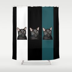Three Black Cats with a White/Black/Green Background Shower Curtain