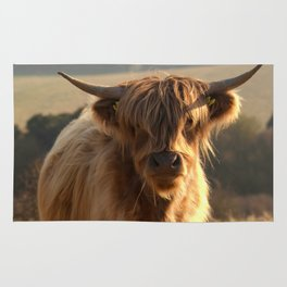 Young Highland Cow Rug