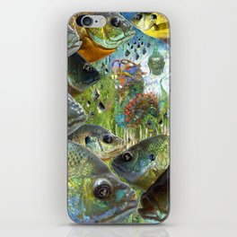 Awareness and Emergence iPhone Skin