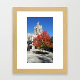 Autumn Leaves at Princeton Univeristy Framed Art Print