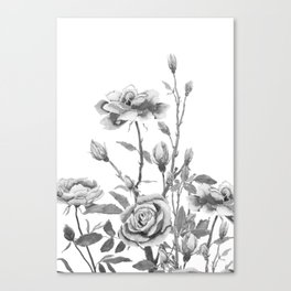 black and white roses Canvas Print