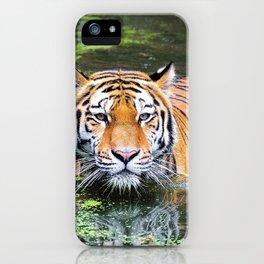 Tiger | Tigre iPhone Case