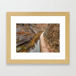 Paw Paw Boardwalk Trail Framed Art Print
