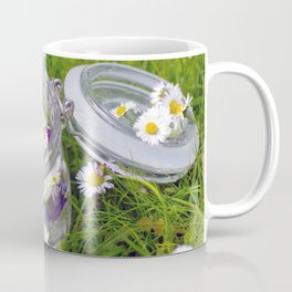 Daisies in glass, decorative herb still live Coffee Mug