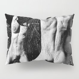 Strip Search Pillow Sham