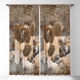 Mushroom Tile Blackout Curtain
