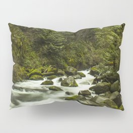 Rios de Oregon 1 Pillow Sham