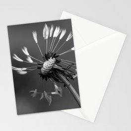 Almost naked black and white dandelion Stationery Cards