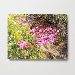 Volcanic Petals Metal Print