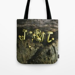 Fungus Sulphur Tuft growing under the bark of a fallen tree. Norfolk, UK. Tote Bag