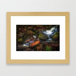 Colours of Autumn in a Brecon stream Framed Art Print
