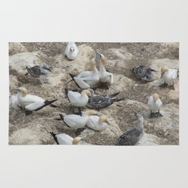 Gannets in a row Rug