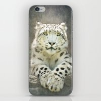 snow leopard iPhone & iPod Skins featuring Snow Leopard by Pauline Fowler ( Polly470 )