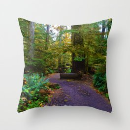 Cathedral Grove on Vancouver Island, BC Throw Pillow