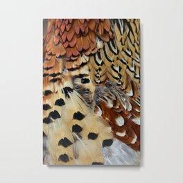 Pheasant Feathers Metal Print