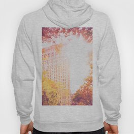 New York City Sunset Hoody