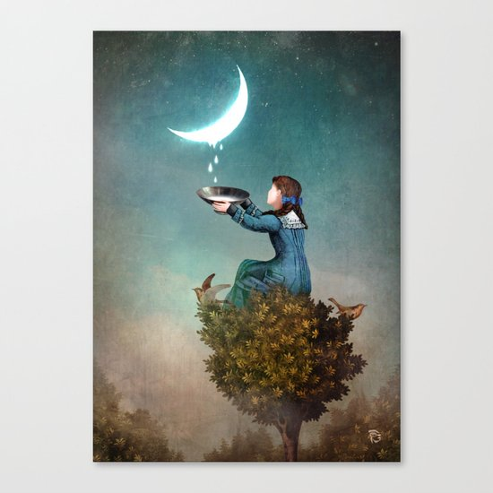 Moondrops Canvas Print