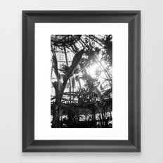 Jurassic Park Framed Art Print