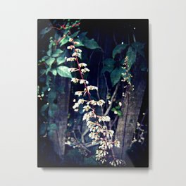 Subtle Beauty Metal Print