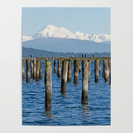 MOUNT BAKER KOMA KULSHAN AND OLD PILINGS  Poster