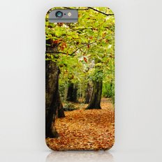 Autumn in the Forest iPhone 6s Slim Case