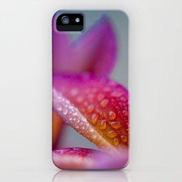 Pua Melia ke Aloha Hawaii iPhone Case