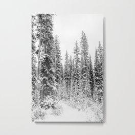 winter forrest Metal Print