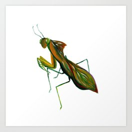 The Leaf Mantis Art Print