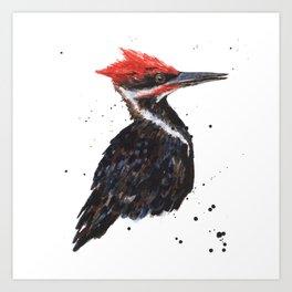 Woodpecker painting, bird paintings, bird lover gift, pileated woodpecker Art Print