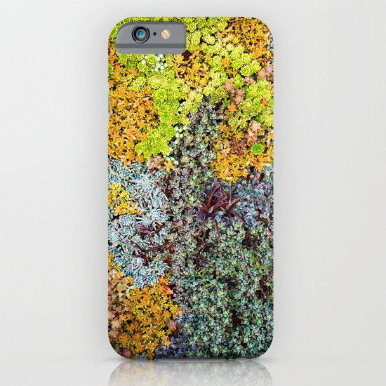 Wall of Succulents iPhone & iPod Case