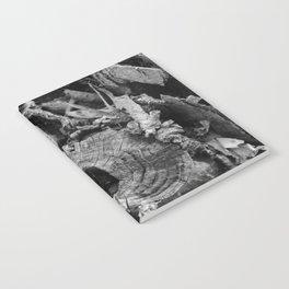 Tree Stumps Notebook