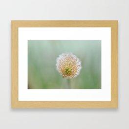 Early morning dew - 2 Framed Art Print