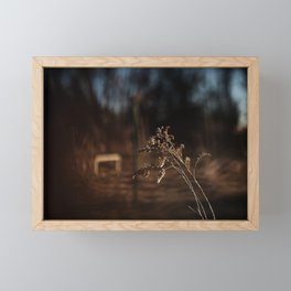 Rustic | Nature and Landscape Photography Framed Mini Art Print