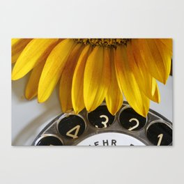 The sunflower on the phone Canvas Print