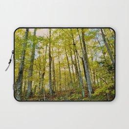 Birches in Autumn Light Laptop Sleeve