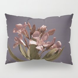 Pretty in Pink Vintage Pillow Sham