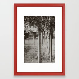 Altertree Framed Art Print