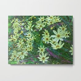 Whimsical Yellow Daisies Metal Print