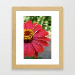 The Flower of the Garden Framed Art Print