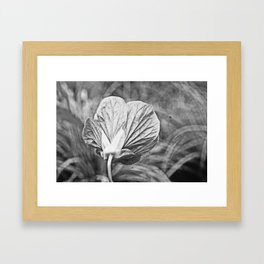 Death is all metaphors, shape in one history Framed Art Print
