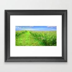 Scent of a Green Field after Rain Framed Art Print