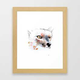 Cumpeo Fox Framed Art Print