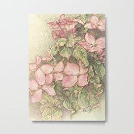 Satomi Dogwood, Pencil Sketch II Metal Print