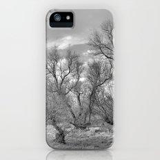 Phantom forest iPhone (5, 5s) Slim Case