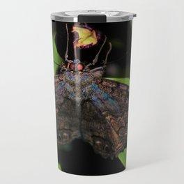 Night Moth Travel Mug